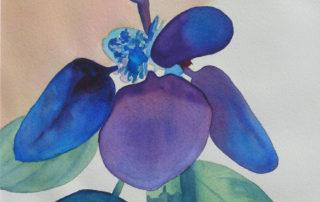 Blue Belle I
