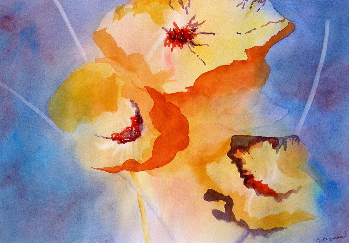 Complementary Poppies